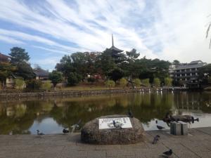 sarusawa1031_convert_20151031115156.jpg