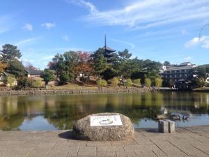 sarusawa1111_convert_20151111114348.jpg