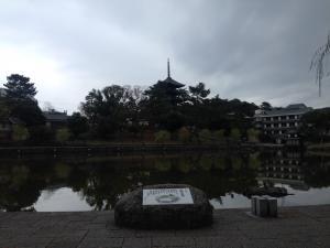 sarusawa1125_convert_20151125113823.jpg