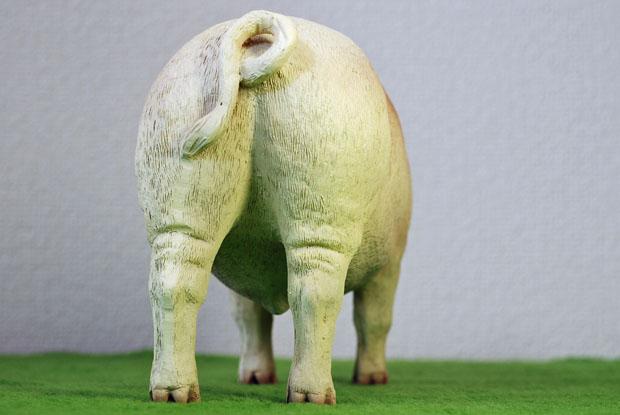 ZYTOYS PIG 05