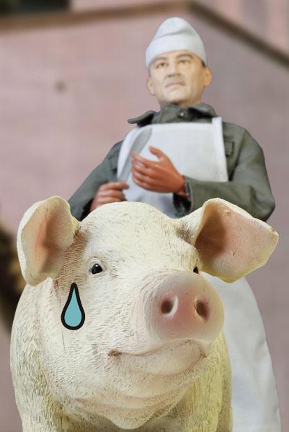ZYTOYS PIG 08