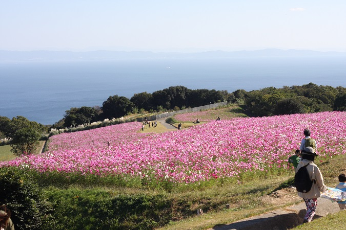 151025miharashi.jpg
