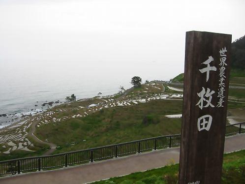 2015 4 19あぜ塗り」 (66)