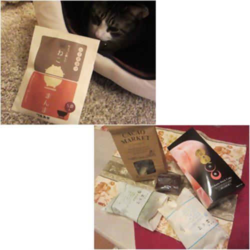 cats_20151118185155591.jpg