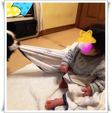 15yuki1120_2329.jpg