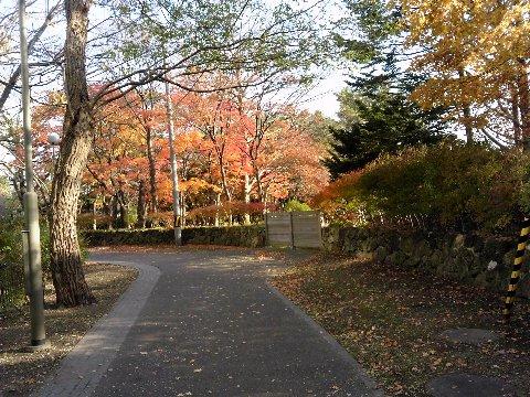 中島公園01