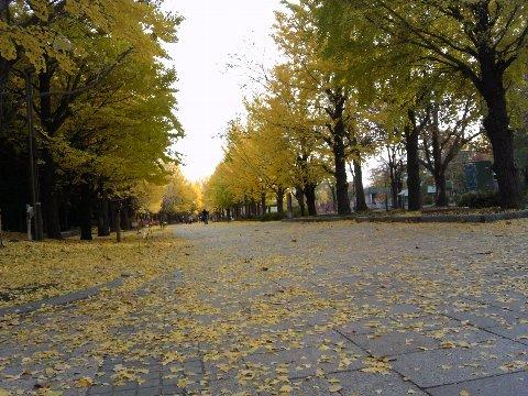 中島公園07