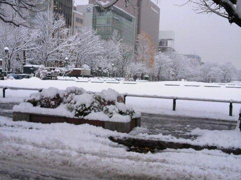 雪の大通公園2015_1124