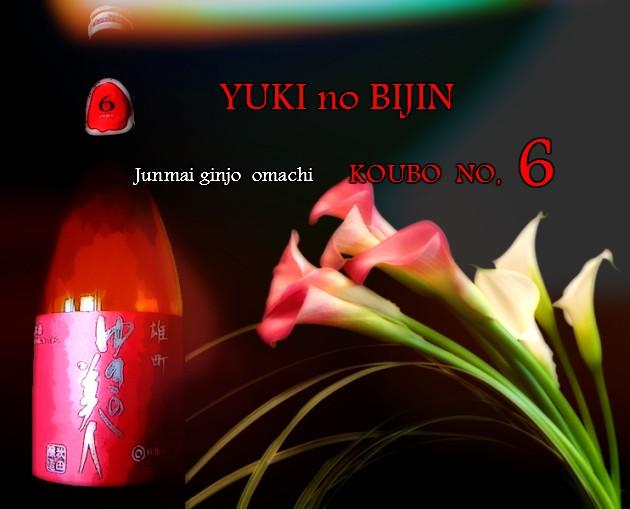 無題6gouyukibi