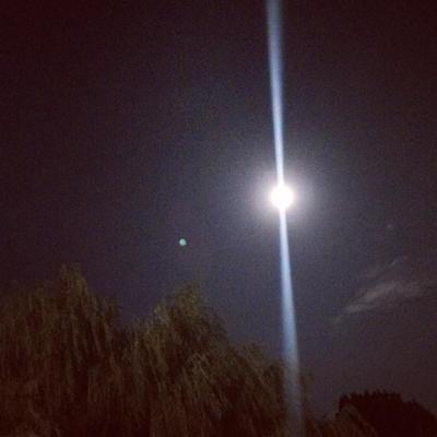満月@井の頭公園