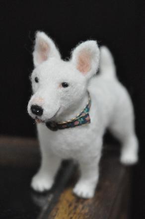 犬1510170014(1)
