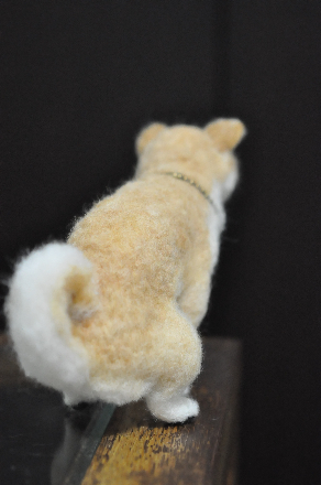 犬1510170003(1)