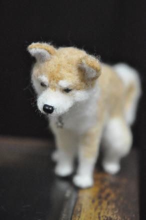 犬1510170001(1)