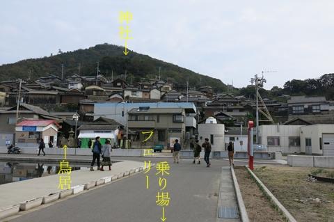 221_mikan2.jpg