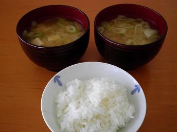 hanakatuo6.jpg