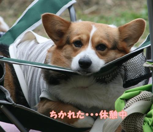 笑遊会 宗像 MAYU3 087