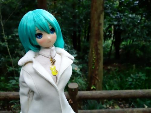 森のお散歩06
