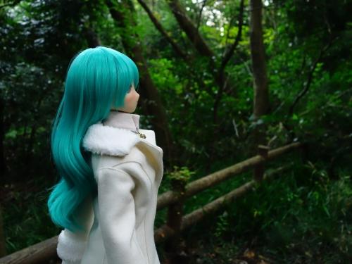森のお散歩07