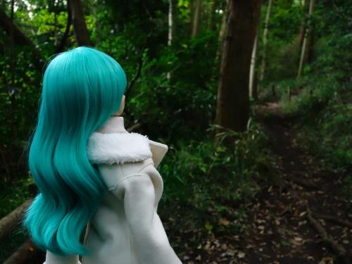 森のお散歩08