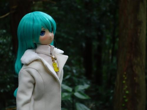 森のお散歩09