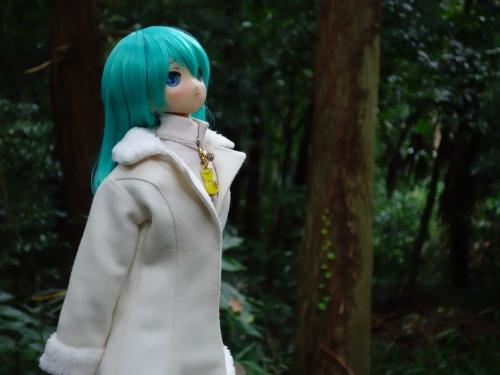 森のお散歩10