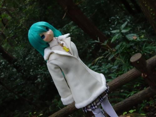 森のお散歩11