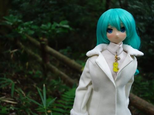 森のお散歩13