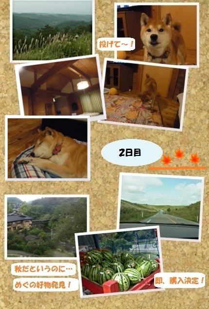 コルクボード・九州秋の旅4