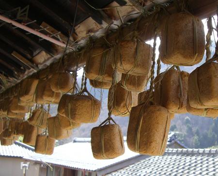 豆味噌づくりに見られる日本の味噌玉