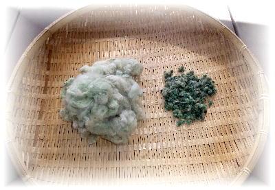 緑綿7-1