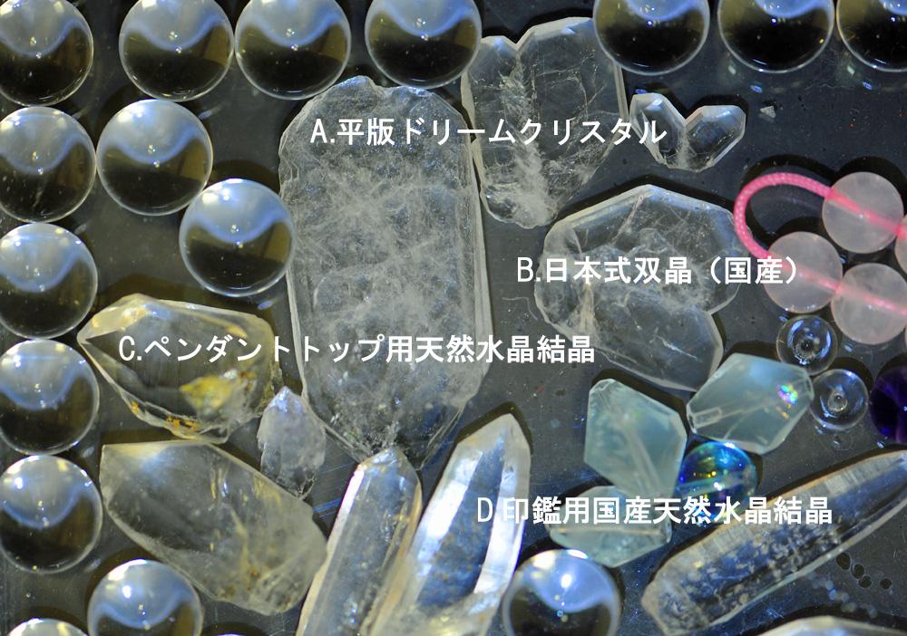 DSC_7608-1000-2.jpg