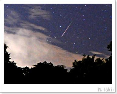 ペルセウス座流星群2010_01