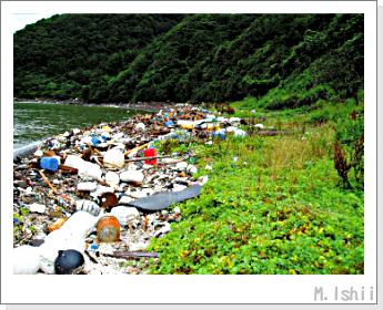 漂着ゴミ01