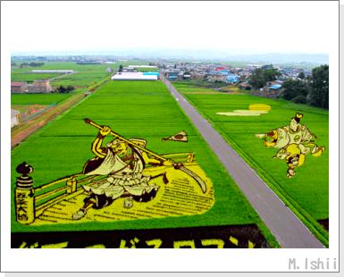 田んぼアート2010_04