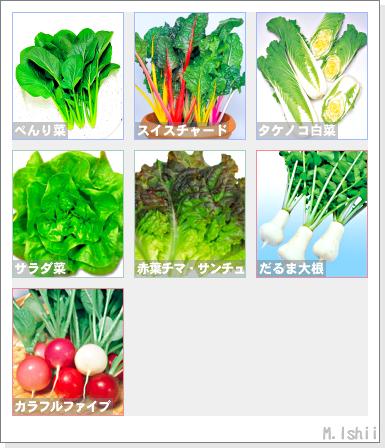 野菜投票2011秋冬02