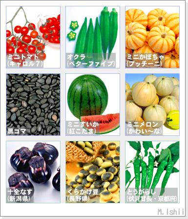 野菜投票2012春夏02