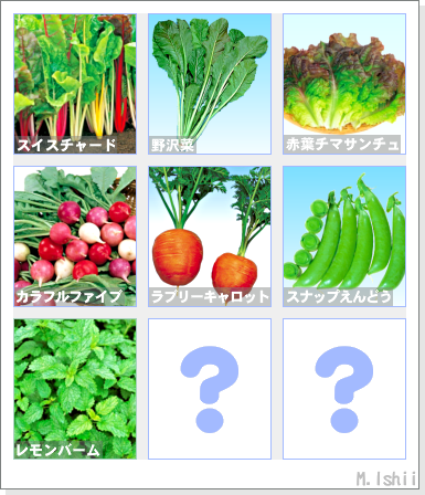 ペット栽培2012秋冬_ラインナップ01