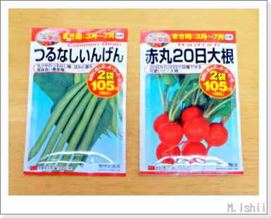 ペットボトル野菜の種・春夏2013_02