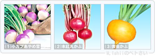 野菜投票2014_01