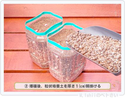 種蒔き作業手順の検証05