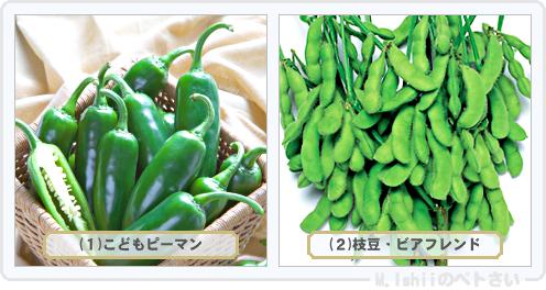 野菜投票2014_02