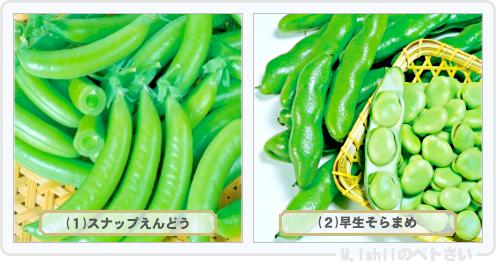 野菜投票2014_04