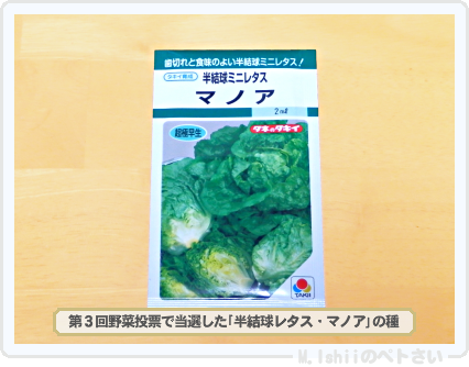 秋冬野菜の種01