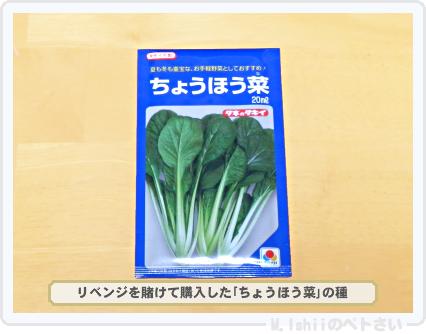 秋冬野菜の種02