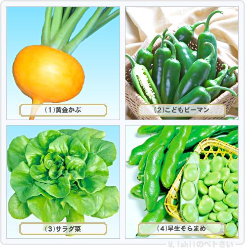 野菜投票2014_05
