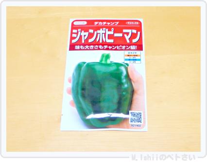 夏野菜の種2015_01