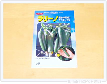 夏野菜の種2015_02