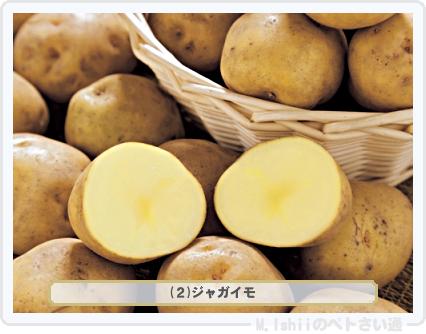 野菜投票2016_01候補02