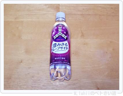 試作したペットボトル鉢01