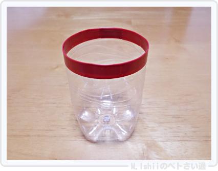 試作したペットボトル鉢02